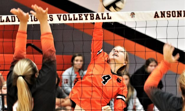Ansonia derails Lady Roaders in straight sets