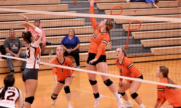 Ansonia Lady Tigers trounce Trail in three sets