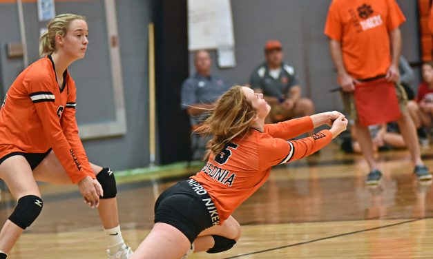 Tigers Volleyball Play Well But Falls to Preble Shawnee